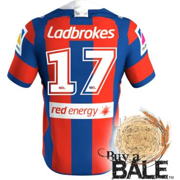 Buy A Bale | Player Worn and Signed Jersey #17 Josh King